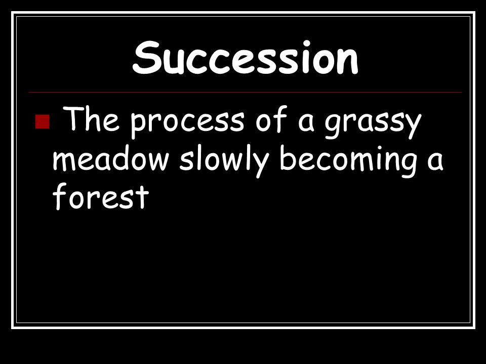 Succession The process of a grassy meadow slowly becoming a forest