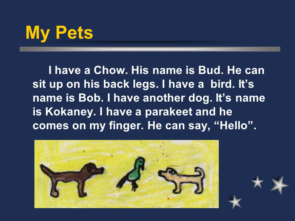 My Pets I have a Chow. His name is Bud. He can sit up on his back legs. I have a bird. It's name is Bob. I have another dog. It's name is Kokaney. I h