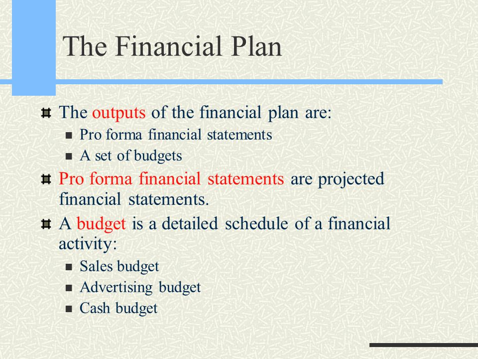 The Financial Plan The outputs of the financial plan are: Pro forma financial statements A set of budgets Pro forma financial statements are projected