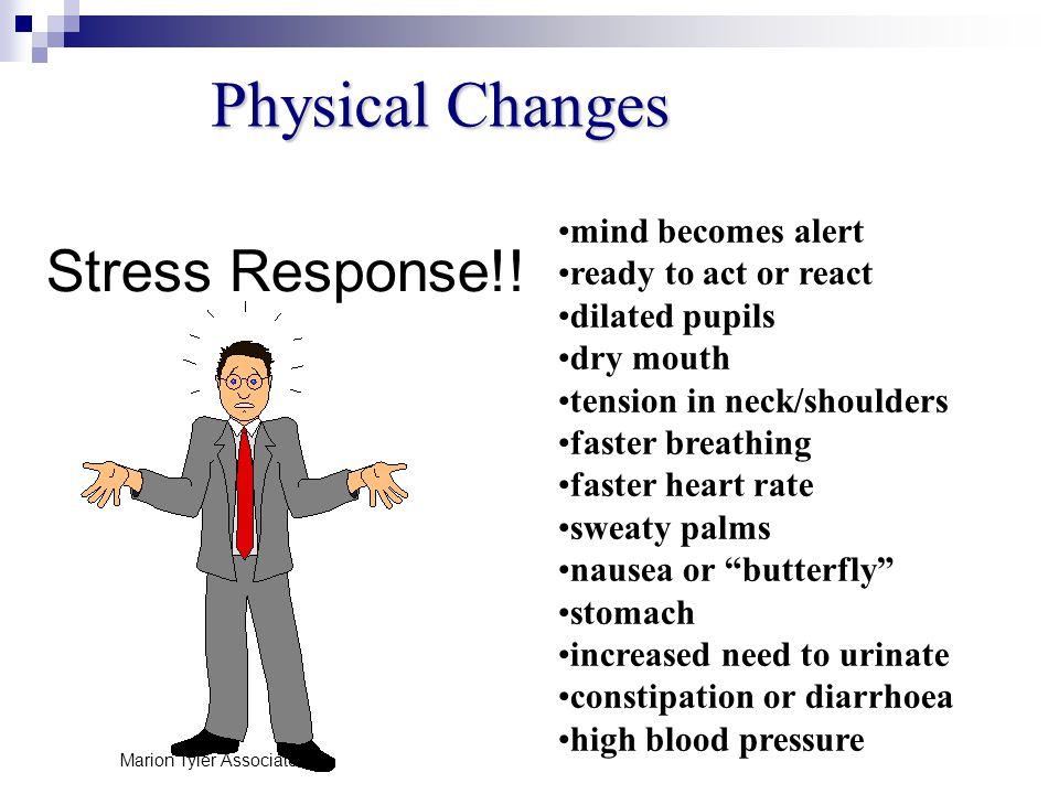 Stress Response!.
