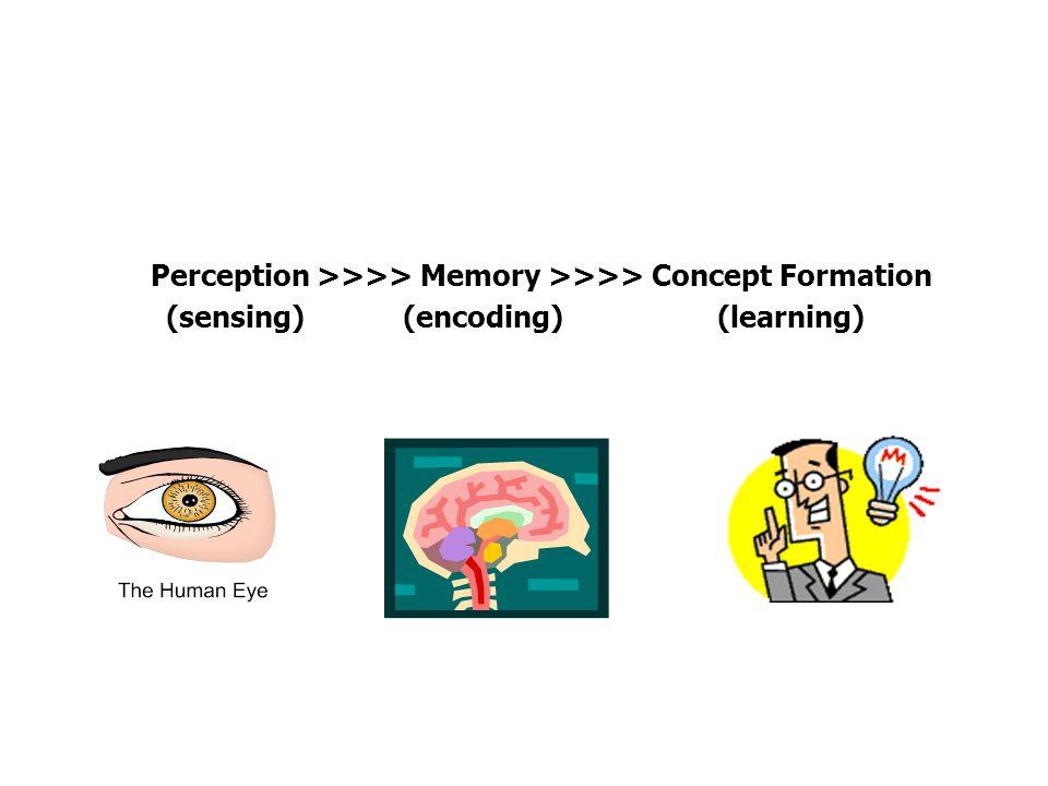 Perception >>>> Memory >>>> Concept Formation (sensing) (encoding) (learning)