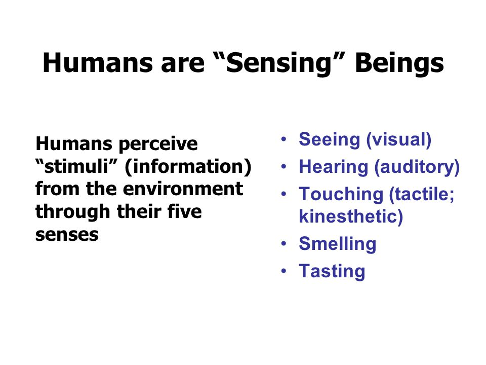"""Humans are """"Sensing"""" Beings Humans perceive """"stimuli"""" (information) from the environment through their five senses Seeing (visual) Hearing (auditory)"""