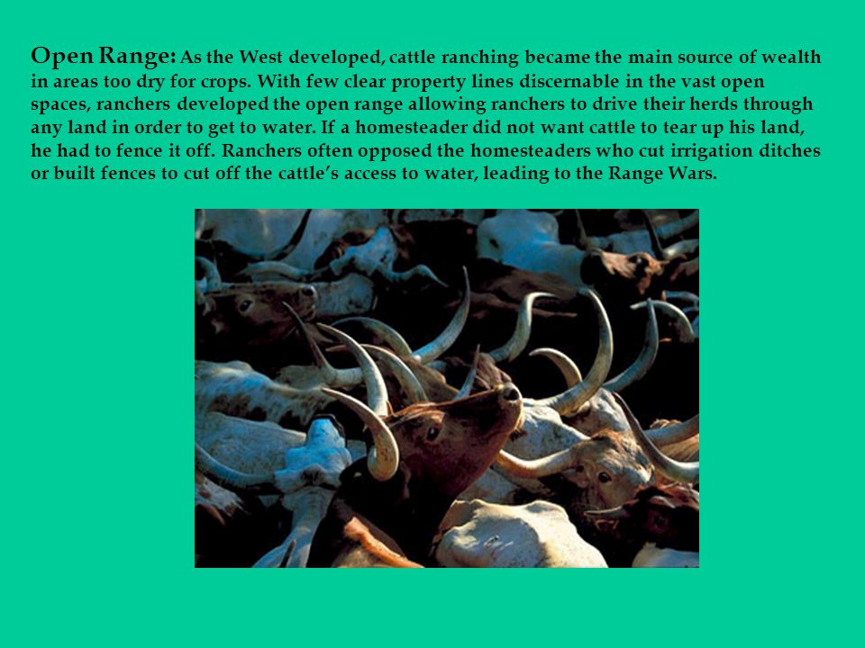 Open Range: As the West developed, cattle ranching became the main source of wealth in areas too dry for crops.