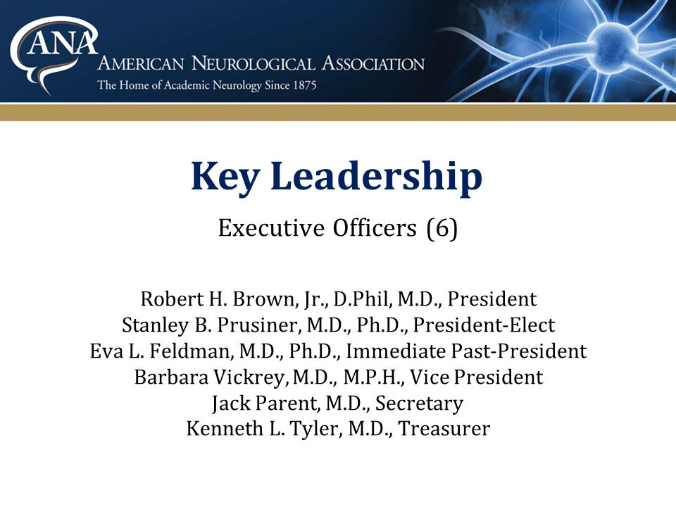 Board of Directors Directors (10) * Due to rotate off or in new position after October 14, 2013 election 2011 – 2014 Allan I.