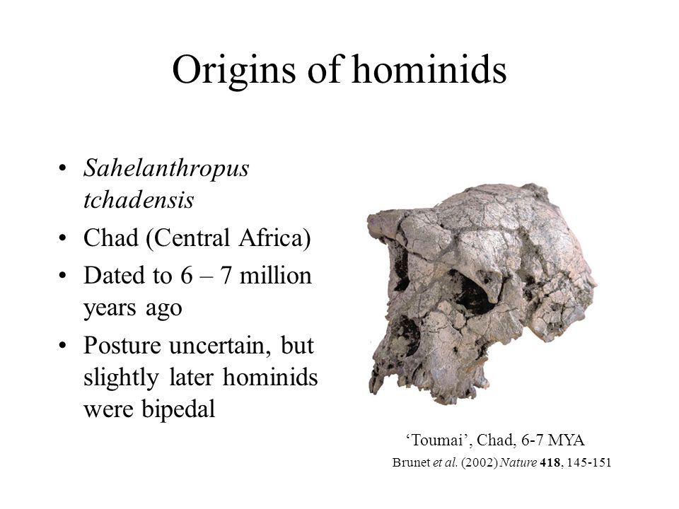 Further reading Jobling MA, Hurles ME, Tyler-Smith C (2004) Human Evolutionary Genetics.