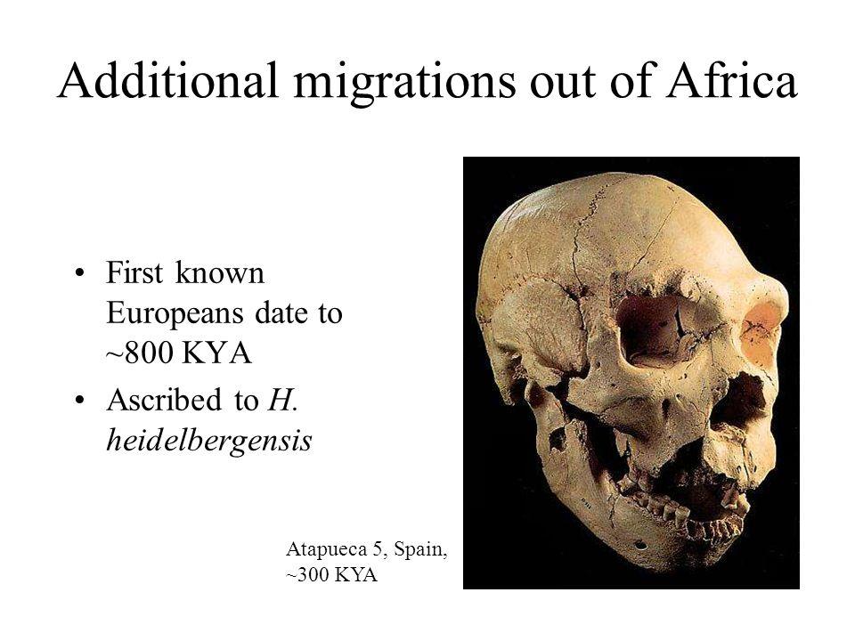 Origins of modern humans (1) Anatomically modern humans in Africa ~130 KYA In Israel by ~90 KYA Not enormously successful Omo I, Ethiopia, ~130 KYA