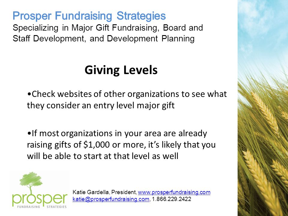 Katie Gardella, President, www.prosperfundraising.comwww.prosperfundraising.com katie@prosperfundraising.comkatie@prosperfundraising.com, 1.866.229.2422 Giving Levels Check websites of other organizations to see what they consider an entry level major gift If most organizations in your area are already raising gifts of $1,000 or more, it's likely that you will be able to start at that level as well