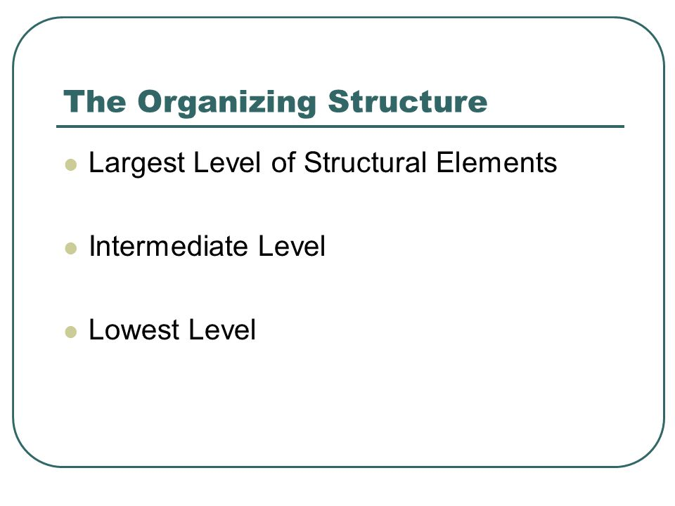 The Organizing Structure Largest Level of Structural Elements Intermediate Level Lowest Level