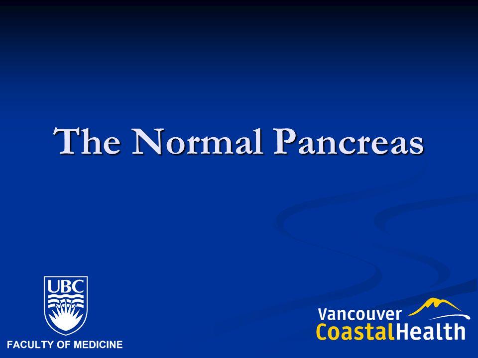 The Normal Pancreas