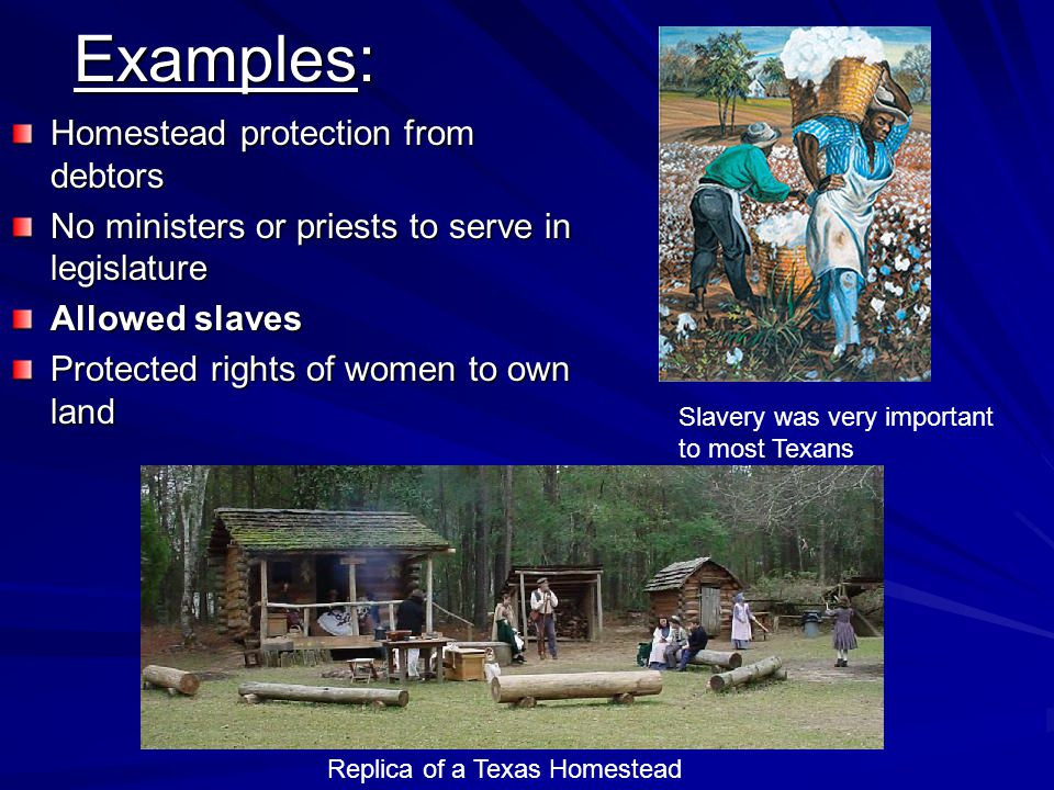 Examples: Homestead protection from debtors No ministers or priests to serve in legislature Allowed slaves Protected rights of women to own land Replica of a Texas Homestead Slavery was very important to most Texans