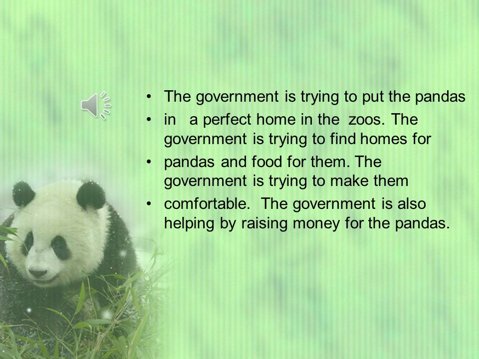 The government is trying to put the pandas in a perfect home in the zoos.