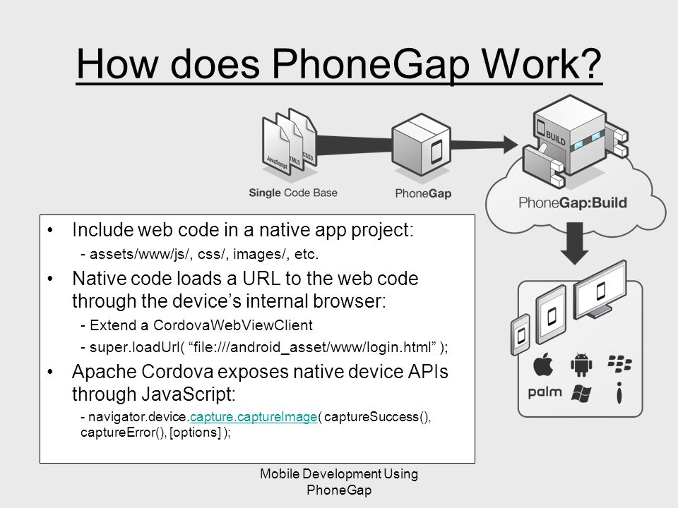 Mobile Development Using PhoneGap How does PhoneGap Work.