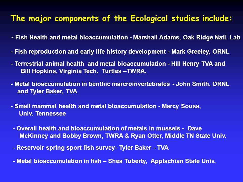 Integration of Biological Exposure and Effects over Landscape of fly ash spill Birds Fish Small mammals Fly Ash Spill Exposure to fly ash - Feeding type - Home range - Habitat type - Trophic level Sentinel Wildlife Species Herps Adult aquatic insects Aquatic insect nymphs Mollusks Benthic macroinvertebrates