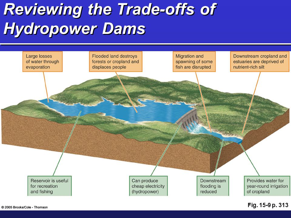 Reviewing the Trade-offs of Hydropower Dams Fig. 15-9 p. 313