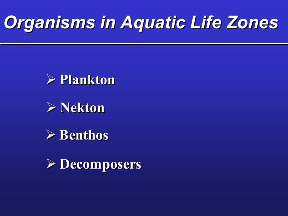 Organisms in Aquatic Life Zones  Plankton  Nekton  Benthos  Decomposers