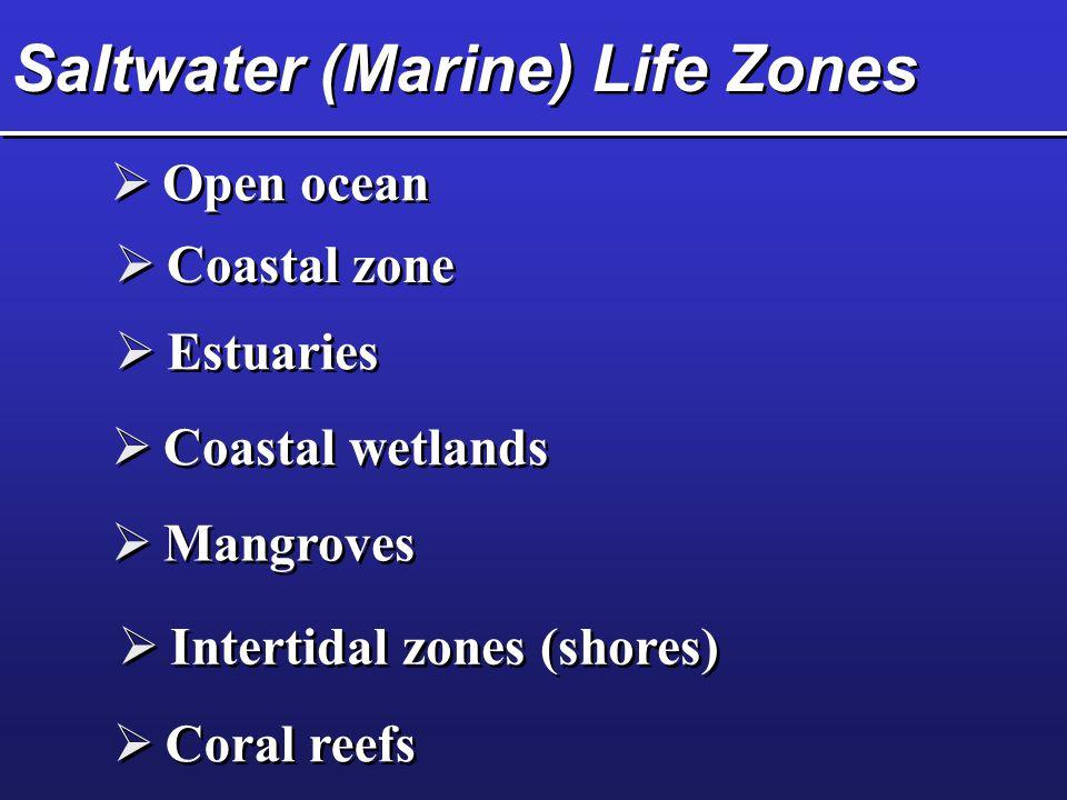 Saltwater (Marine) Life Zones  Coastal zone  Estuaries  Coastal wetlands  Mangroves  Intertidal zones (shores)  Coral reefs  Open ocean
