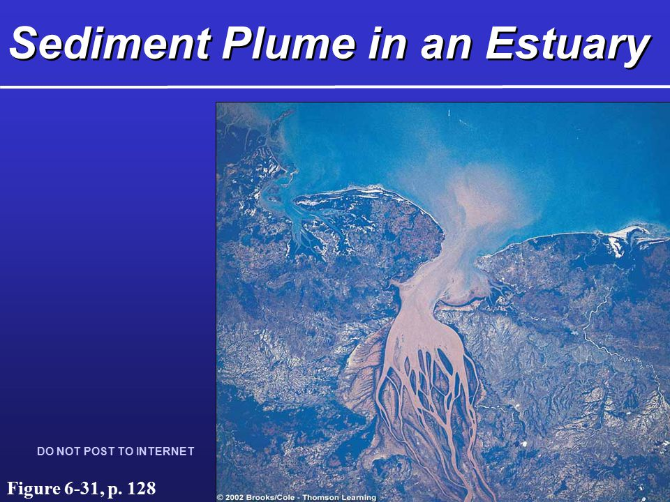 Sediment Plume in an Estuary DO NOT POST TO INTERNET Figure 6-31, p. 128