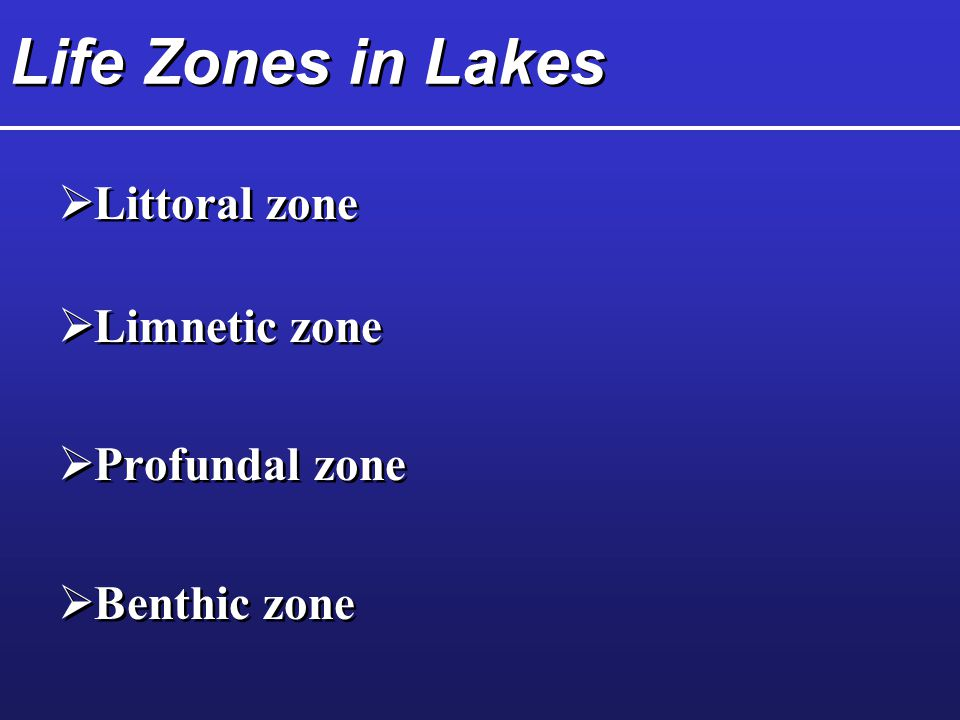 Life Zones in Lakes  Littoral zone  Limnetic zone  Profundal zone  Benthic zone  Littoral zone  Limnetic zone  Profundal zone  Benthic zone