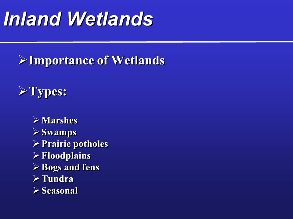 Inland Wetlands  Importance of Wetlands  Types:  Marshes  Swamps  Prairie potholes  Floodplains  Bogs and fens  Tundra  Seasonal  Importance of Wetlands  Types:  Marshes  Swamps  Prairie potholes  Floodplains  Bogs and fens  Tundra  Seasonal