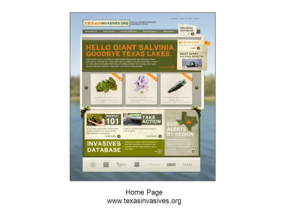Home Page www.texasinvasives.org