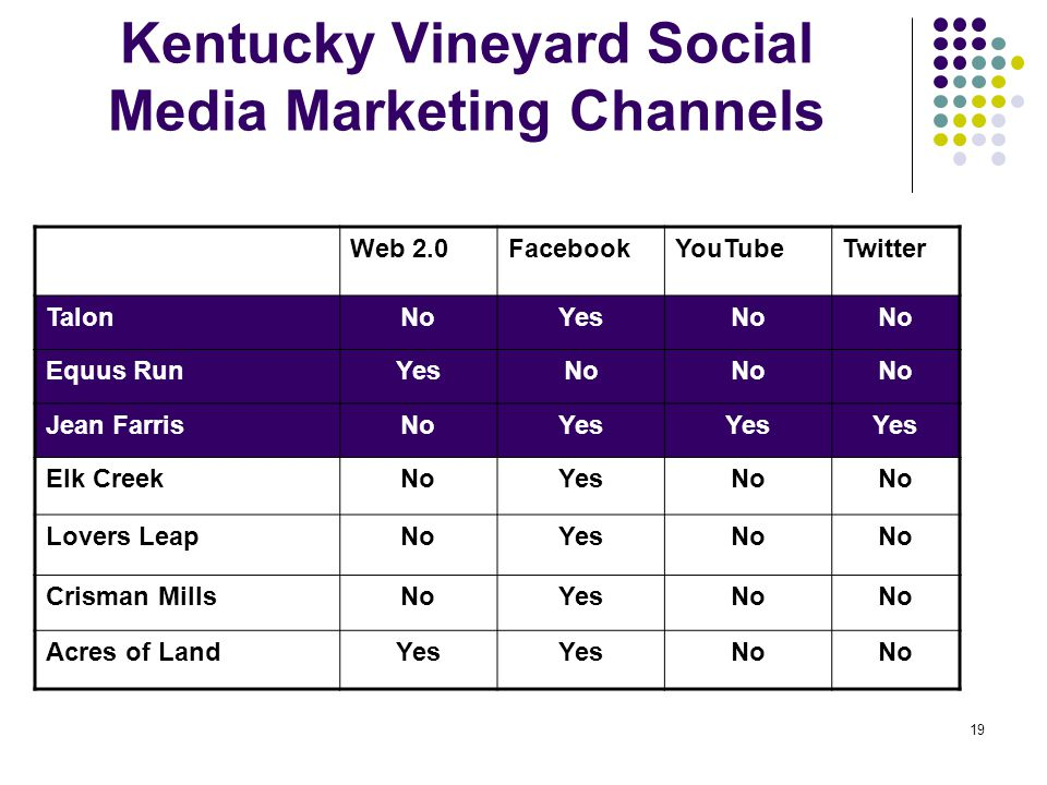 19 Kentucky Vineyard Social Media Marketing Channels Web 2.0FacebookYouTubeTwitter TalonNoYesNo Equus RunYesNo Jean FarrisNoYes Elk CreekNoYesNo Lovers LeapNoYesNo Crisman MillsNoYesNo Acres of LandYes No