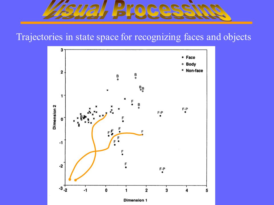 Trajectories in state space for recognizing faces and objects