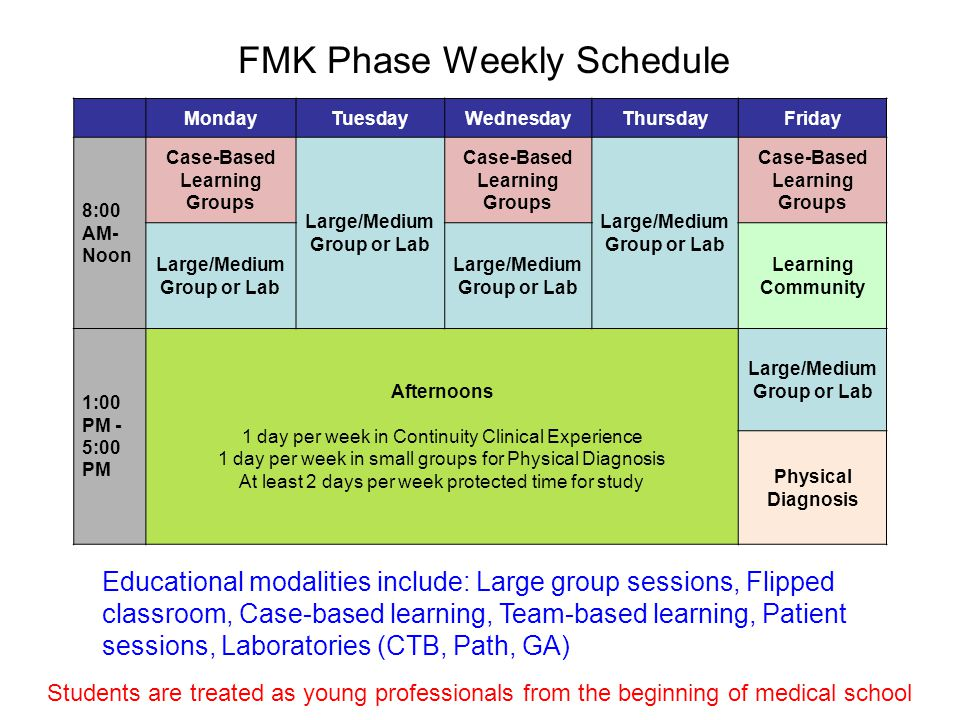 FMK Phase Weekly Schedule MondayTuesdayWednesdayThursdayFriday 8:00 AM- Noon Case-Based Learning Groups Large/Medium Group or Lab Case-Based Learning