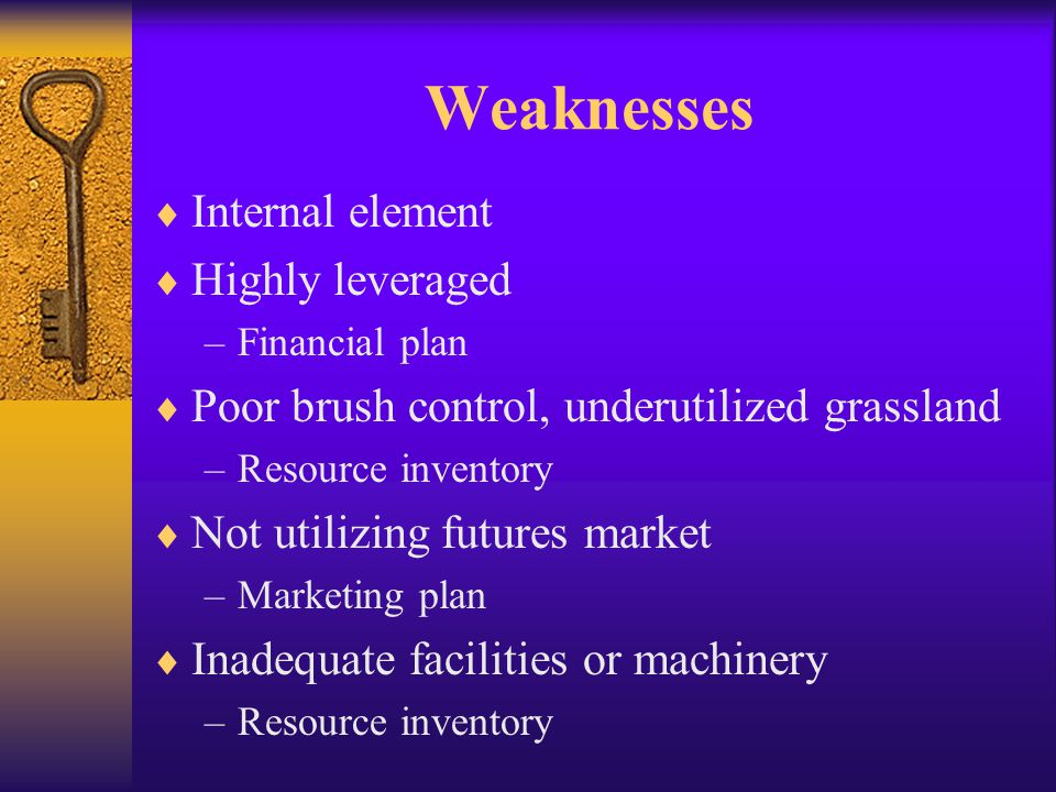 Weaknesses  Internal element  Highly leveraged –Financial plan  Poor brush control, underutilized grassland –Resource inventory  Not utilizing futures market –Marketing plan  Inadequate facilities or machinery –Resource inventory