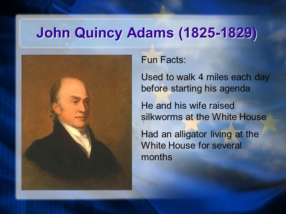 John Quincy Adams (1825-1829) Fun Facts: Used to walk 4 miles each day before starting his agenda He and his wife raised silkworms at the White House Had an alligator living at the White House for several months