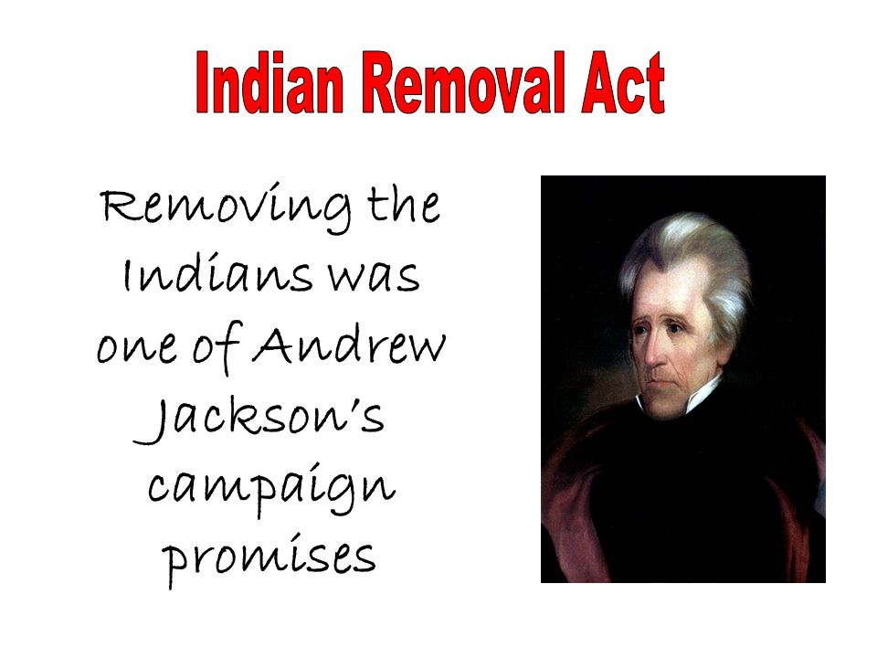 Removing the Indians was one of Andrew Jackson's campaign promises