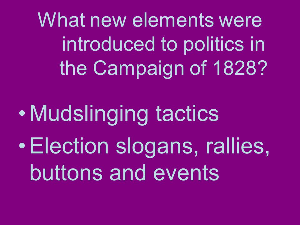 What new elements were introduced to politics in the Campaign of 1828.