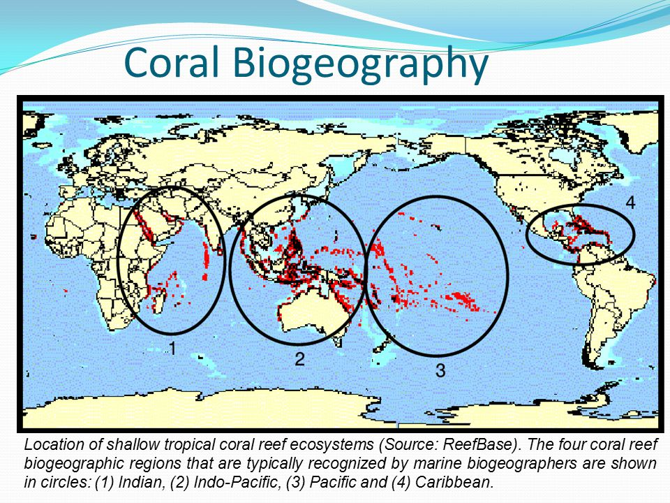 Location of shallow tropical coral reef ecosystems (Source: ReefBase).