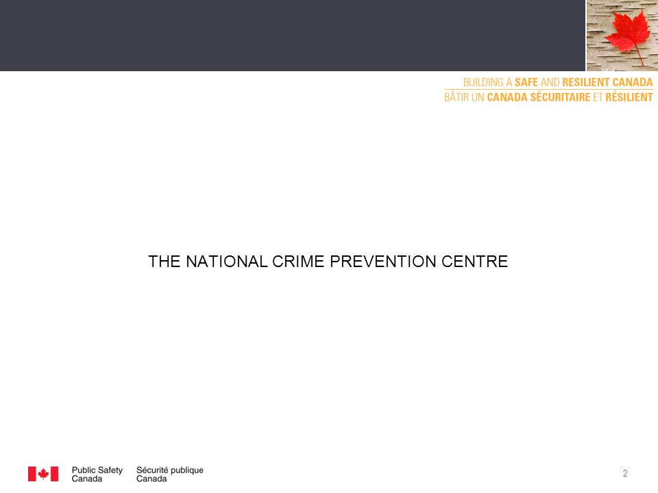 THE NATIONAL CRIME PREVENTION CENTRE 2