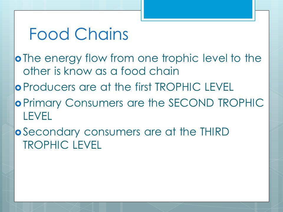 Trophic Levels (feeding levels) 321321