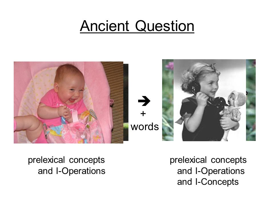 Ancient Question  + words prelexical concepts and I-Operations prelexical concepts and I-Operations and I-Concepts