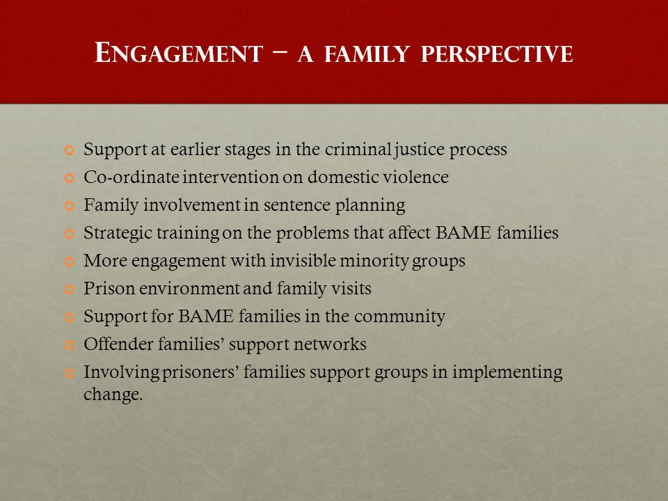 E NGAGEMENT – A FAMILY PERSPECTIVE Support at earlier stages in the criminal justice process Co-ordinate intervention on domestic violence Family invo