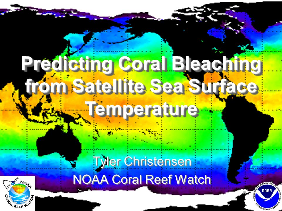 Education Resources Lesson plans –Remote Sensing & Electromagnetic Spectrum –Satellite Altimetry –Phytoplankton and Ocean Color –Coral Reefs: Symbiosis and Anatomy –Temperature and Coral Bleaching –Coral Reef Conservation