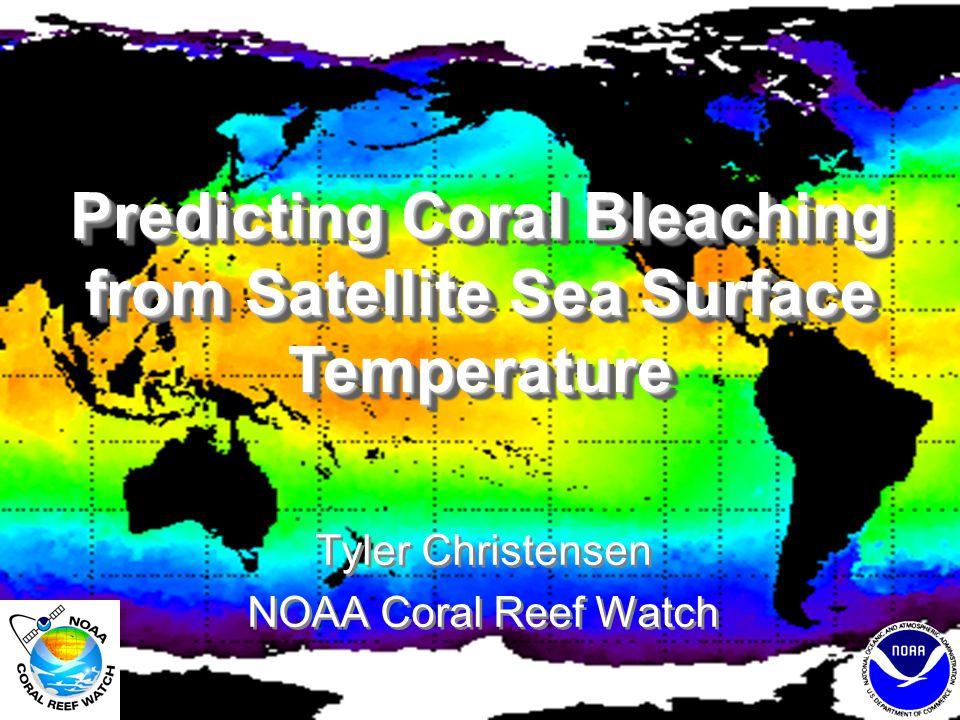 -- coral bleaching --