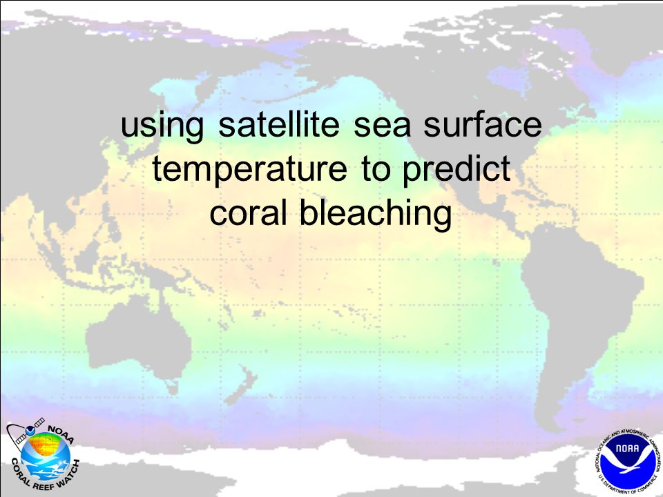 using satellite sea surface temperature to predict coral bleaching
