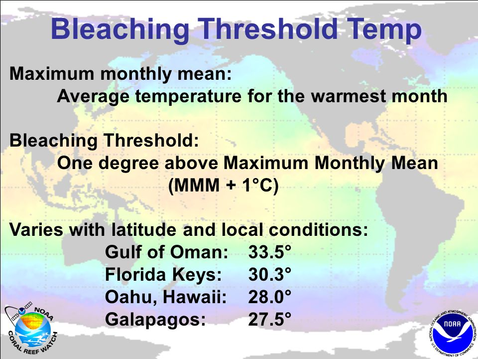 Bleaching Threshold Temp Maximum monthly mean: Average temperature for the warmest month Bleaching Threshold: One degree above Maximum Monthly Mean (MMM + 1°C) Varies with latitude and local conditions: Gulf of Oman:33.5° Florida Keys:30.3° Oahu, Hawaii:28.0° Galapagos:27.5°