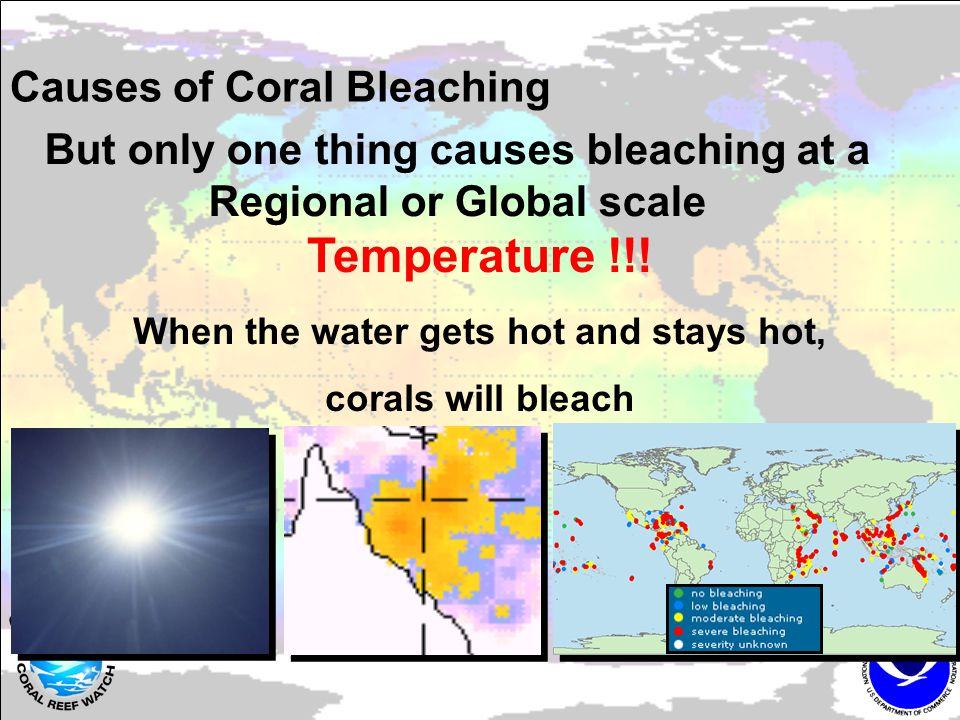 Coral Bleaching HotSpots Is today's temperature above the average for the warmest month?