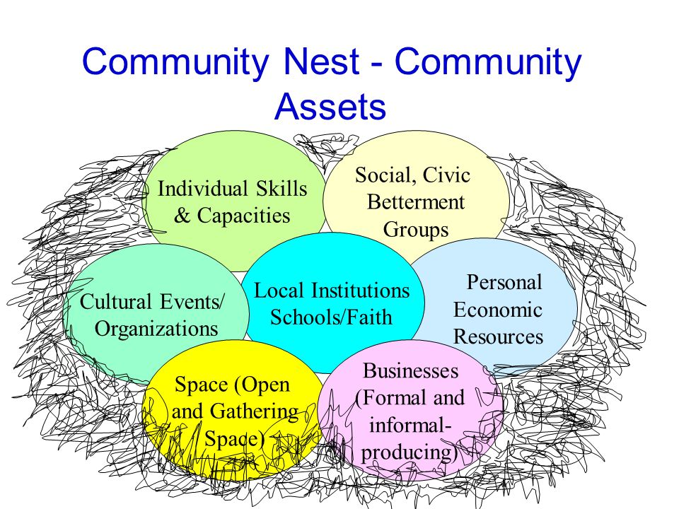 Individual Skills & Capacities Social, Civic Betterment Groups Community Nest - Community Assets Personal Economic Resources Local Institutions Schools/Faith Cultural Events/ Organizations Space (Open and Gathering Space) Businesses (Formal and informal- producing)
