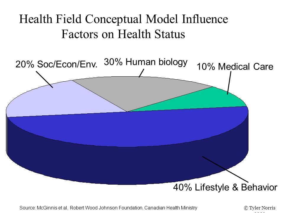 Health Field Conceptual Model Influence Factors on Health Status 40% Lifestyle & Behavior 10% Medical Care 20% Soc/Econ/Env.