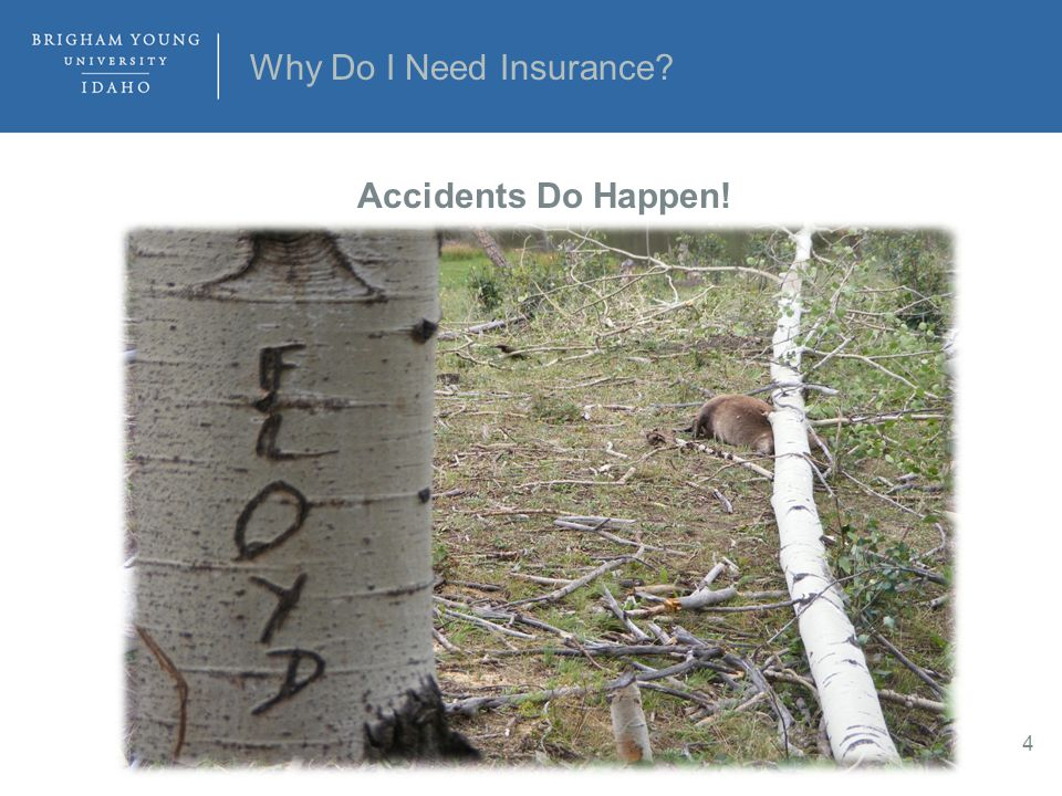 Why Do I Need Insurance? 4 Accidents Do Happen!