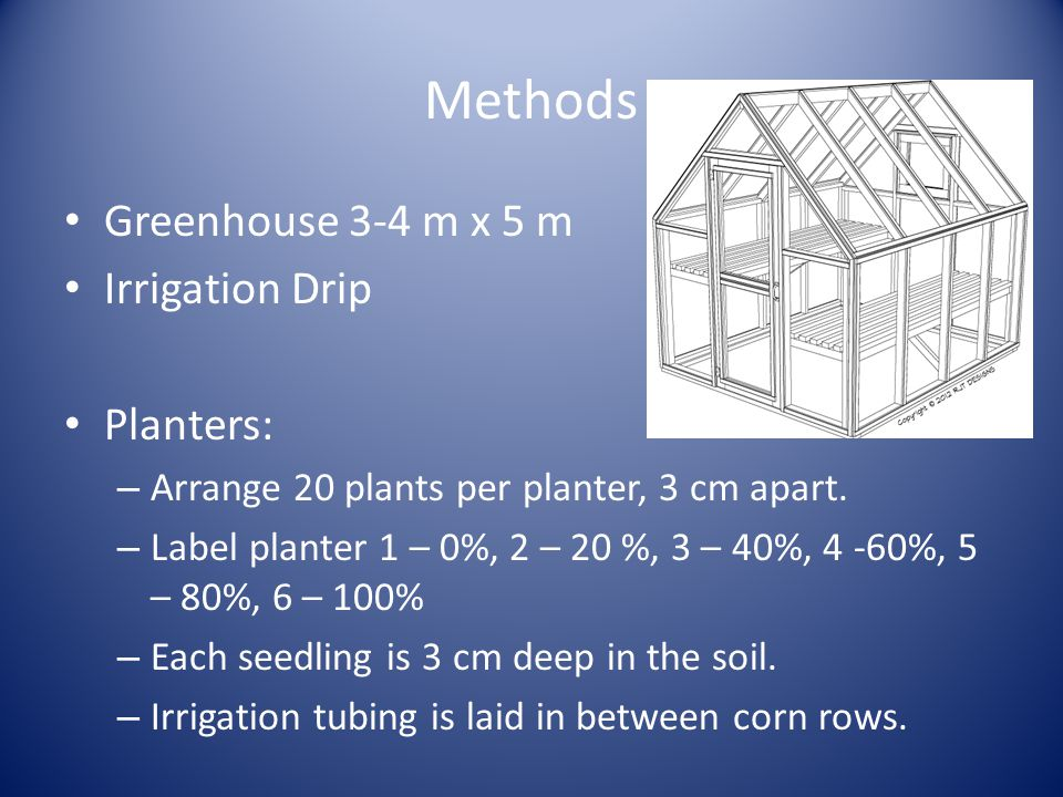 Methods Greenhouse 3-4 m x 5 m Irrigation Drip Planters: – Arrange 20 plants per planter, 3 cm apart.