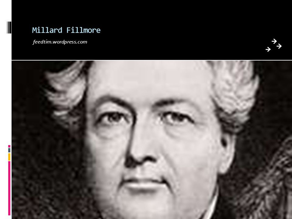 Millard Fillmore feedtim.wordpress.com