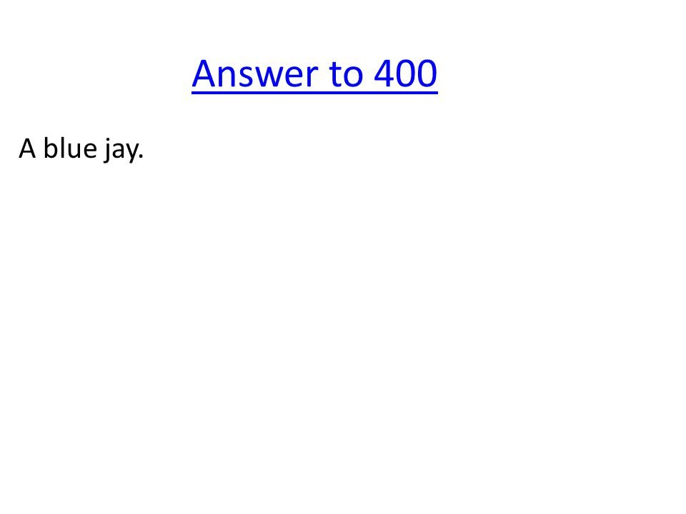 Answer to 400 A blue jay.