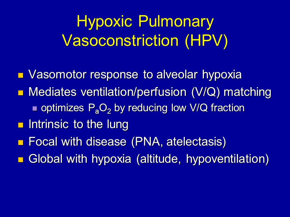 Hypoxic Pulmonary Vasoconstriction (HPV) Vasomotor response to alveolar hypoxia Vasomotor response to alveolar hypoxia Mediates ventilation/perfusion (V/Q) matching Mediates ventilation/perfusion (V/Q) matching optimizes P a O 2 by reducing low V/Q fraction optimizes P a O 2 by reducing low V/Q fraction Intrinsic to the lung Intrinsic to the lung Focal with disease (PNA, atelectasis) Focal with disease (PNA, atelectasis) Global with hypoxia (altitude, hypoventilation) Global with hypoxia (altitude, hypoventilation)