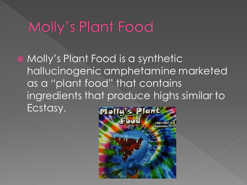 """ Molly's Plant Food is a synthetic hallucinogenic amphetamine marketed as a """"plant food"""" that contains ingredients that produce highs similar to Ecst"""