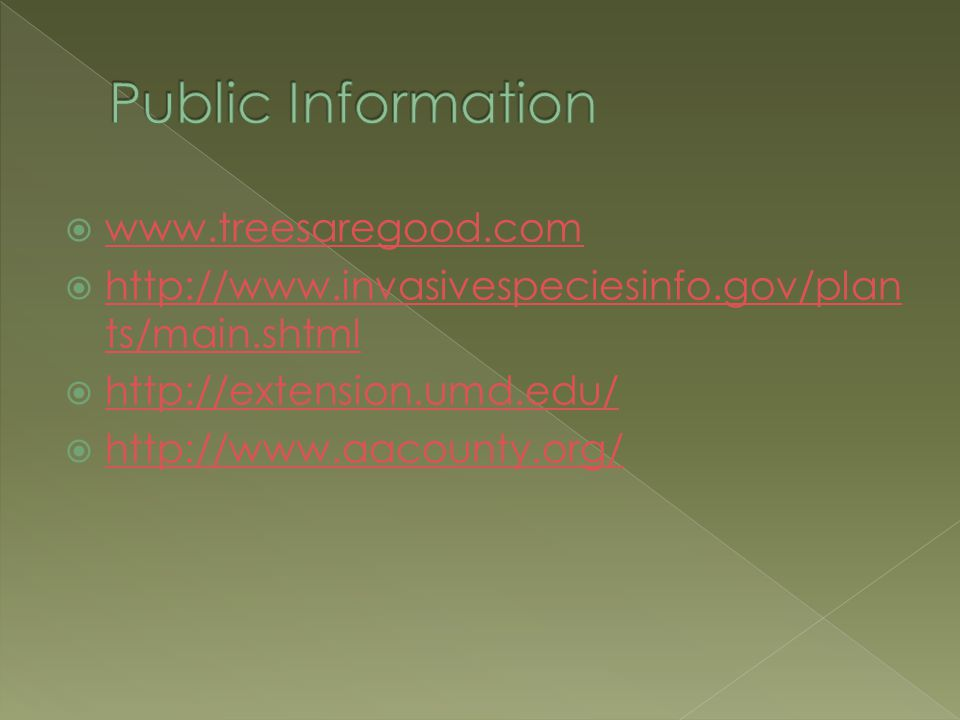  www.treesaregood.com www.treesaregood.com  http://www.invasivespeciesinfo.gov/plan ts/main.shtml http://www.invasivespeciesinfo.gov/plan ts/main.shtml  http://extension.umd.edu/ http://extension.umd.edu/  http://www.aacounty.org/ http://www.aacounty.org/
